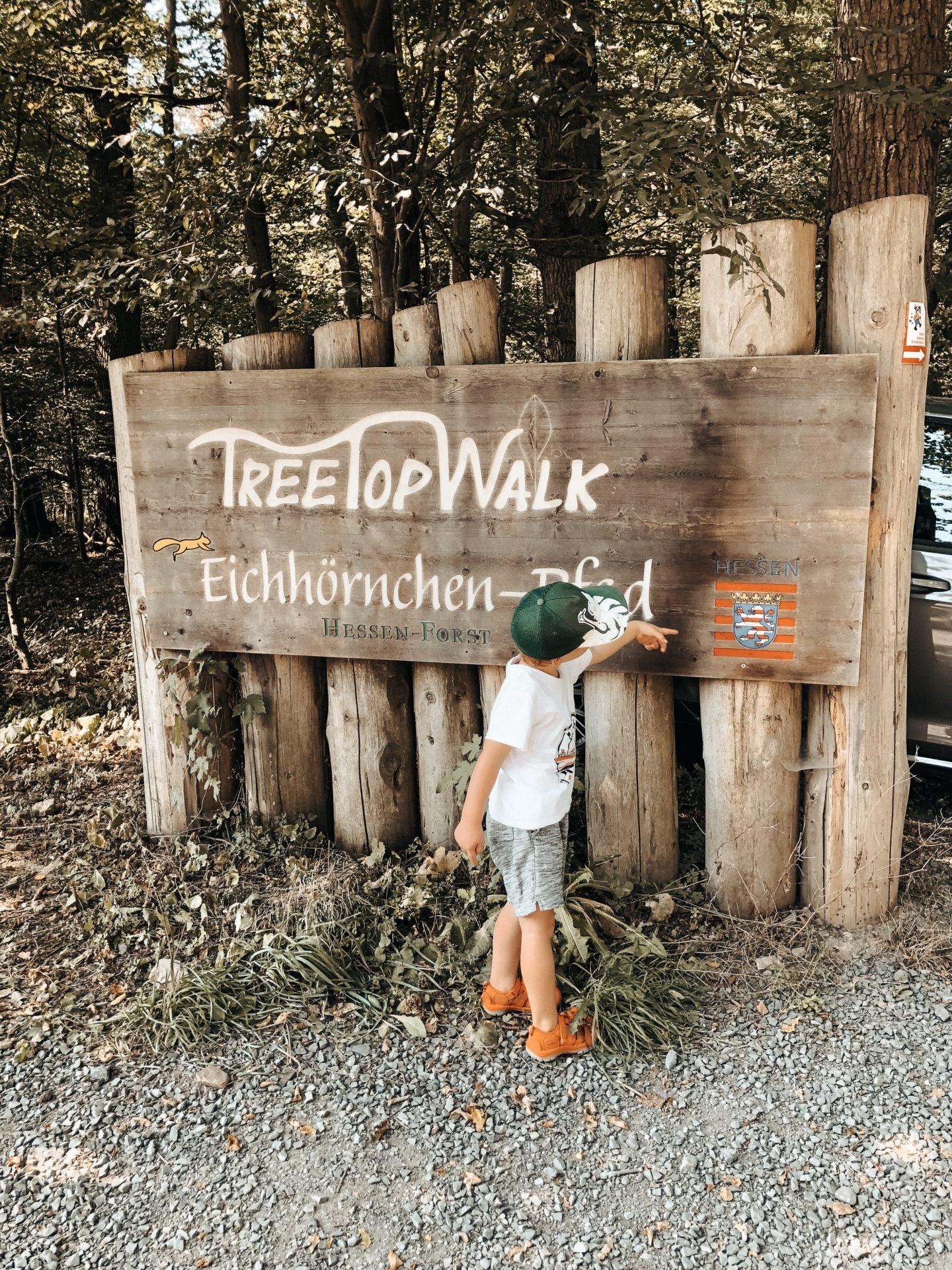 TreeTop Walk Edersee